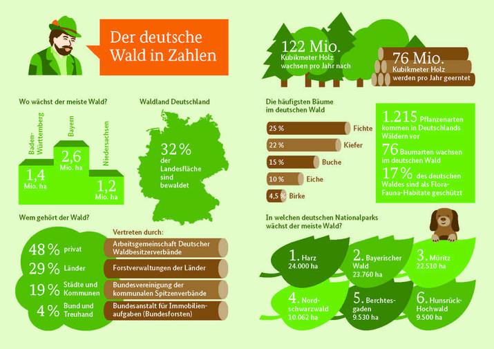 csm_Der_deutsche_Wald_in_Zahlen_Waldfibel__343cc44c11