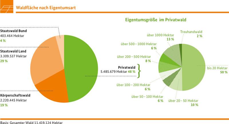 Waldfläche nach Eigentumsart Quelle: BMEL