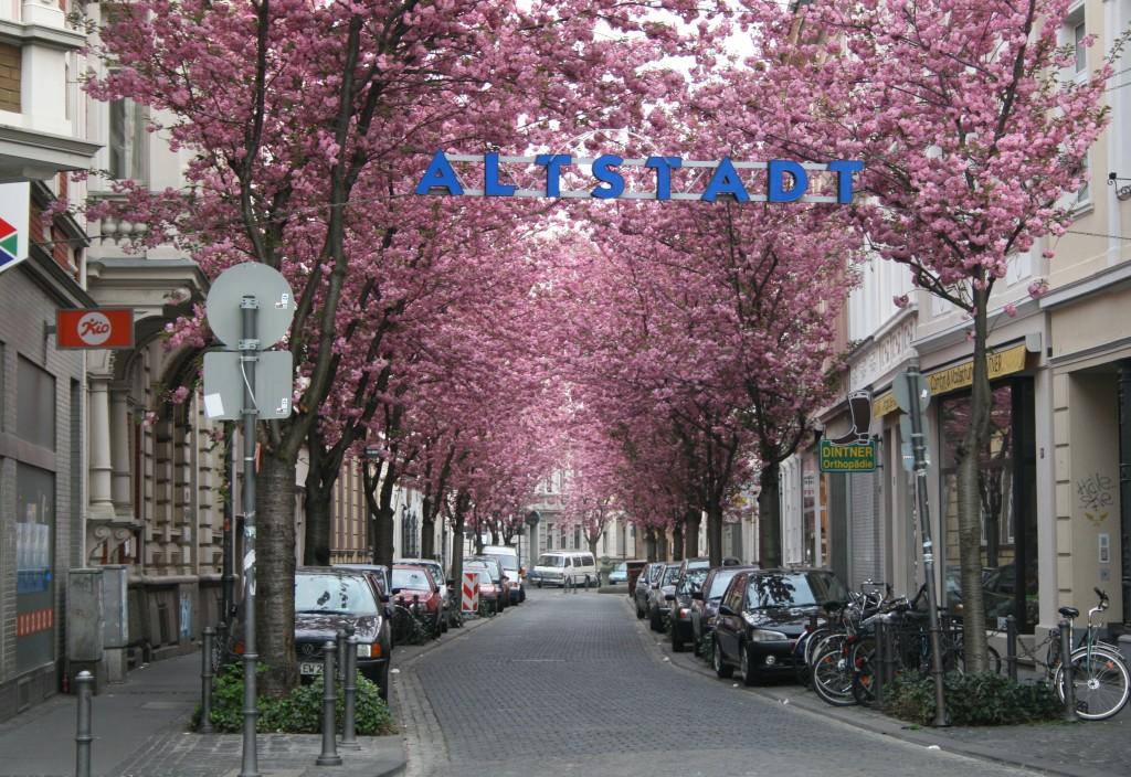Blick in die Breite Straße in der Bonner Altstadt