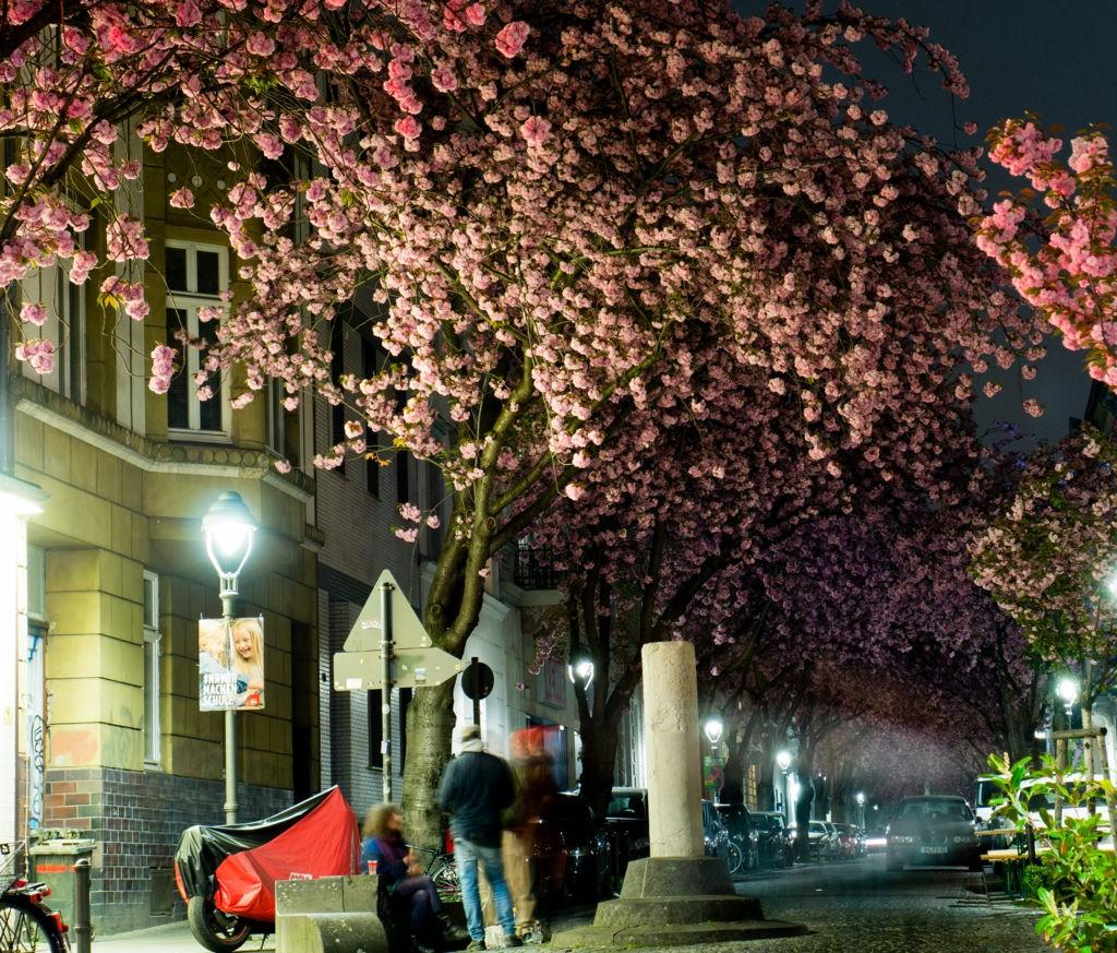 Bonner Heerstraße bei Nacht